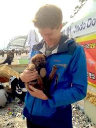 Jindo Puppy!
